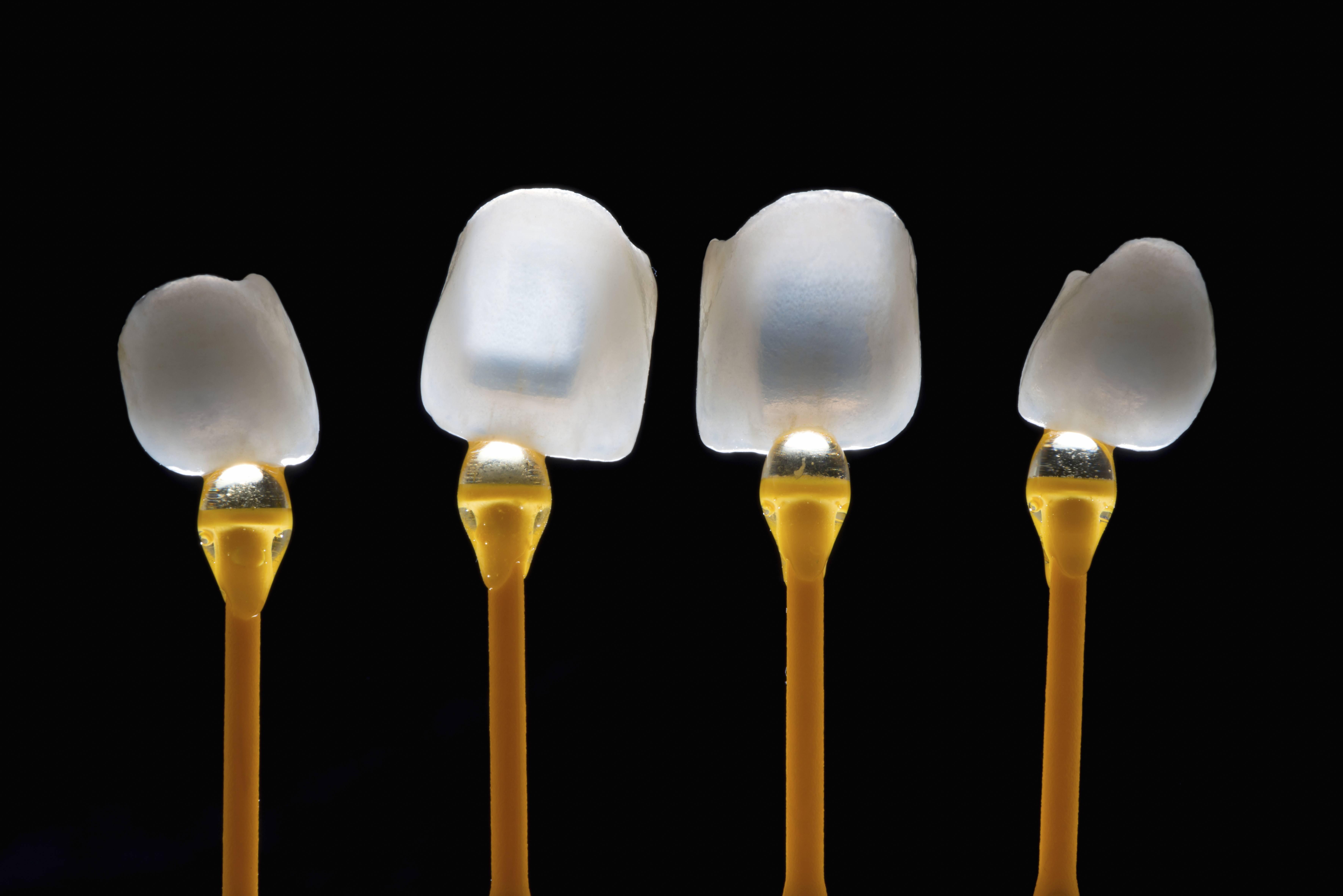 dental-veneers-537255716_7087x4730